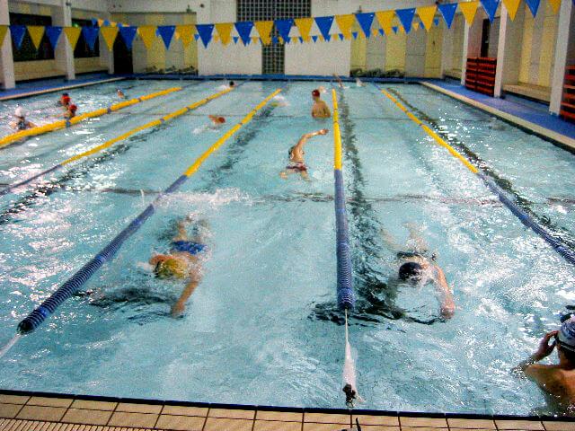 自由遊泳コース